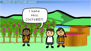 the effect of culture socialization u0026 culture shock on education