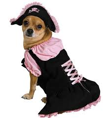 Halloween Pet Costume Cutest Pet Halloween Costumes Cats Dogs