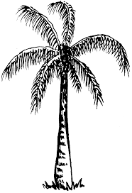 black and white image of trees clip art library