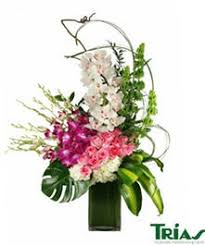 orchid arrangements orchid arrangements from trias flowers in miami florida