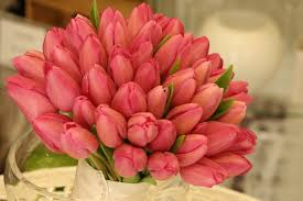tulip bouquets pink tulip bouquet pink tulips tulip bouquet and weddings