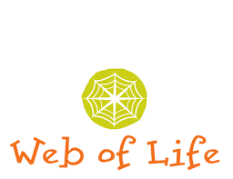 Web Of Life Web Of Life Children S Books Publishes Timeless Children S Books About Colors