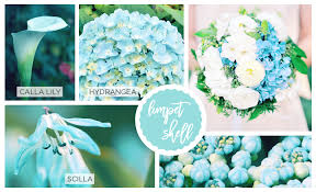 teal flowers flowers inspired by pantone colors of the year