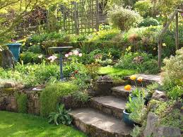Sloping Backyard Landscaping Ideas Triyae Com U003d Terracing A Sloped Backyard Pictures Various Design