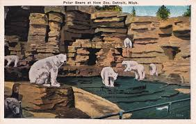 zoo postcard roundup