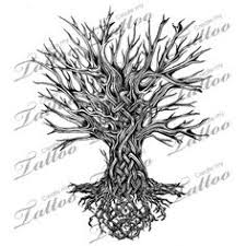 celtic tree of image blakc and white search for