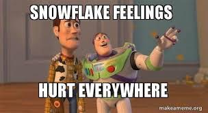 Hurt Feelings Meme - snowflake feelings hurt everywhere make a meme