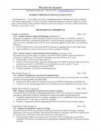 Sample Cfo Resume Resume Services Bay Area