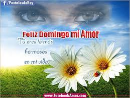 imagenes de amor para el domingo imagenes de buenos dias de amor para descargar gratis imagenes de