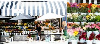 floral shops san francisco flower shops fluxi on tour