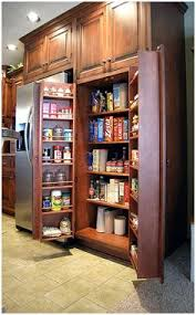 Pantry Kitchen Cabinet Floor To Ceiling Pantry Cabinets With Pull Out Shelving Have This