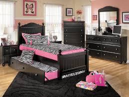 decor 18 enchanting pink and black zebra room decor fantastic