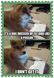 Dog Lawyer Meme - meme round up lawyer dog byt brightest young things