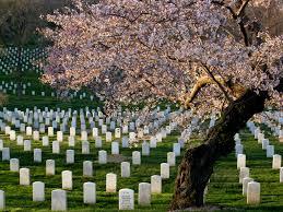 Arlington Cemetery Map Arlington National Cemetary