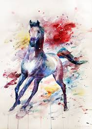 best 25 watercolor horse ideas on pinterest horse paintings