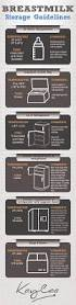 How Long Can Breast Milk Sit Out At Room Temperature - best 25 breastfeeding storage ideas on pinterest breastmilk