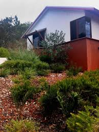 landscaping with local plants wild about gardens garden