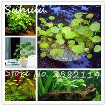 Aquarium Decorations Cheap Compare Prices On Cheap Fish Tank Decorations Online Shopping Buy