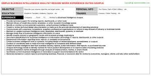 Business Intelligence Analyst Resume Business Intelligence Analyst Job Title Docs