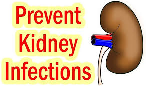 top 16 effective home remedies for kidney infections
