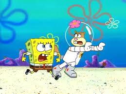 image what u0027s the plan sandy png encyclopedia spongebobia
