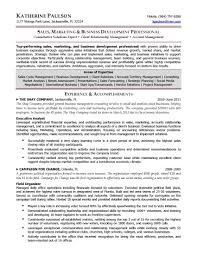 Sample Management Consultant Resume by Project Management Consultant Resume Resume For Your Job Application