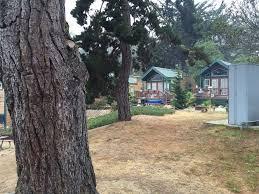 Santa Cruz County Christmas Tree Farms by Building Stronger Families At Koa Monterey Santa Cruz Oc Mom Blog