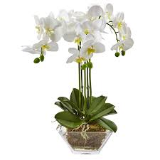 orchid flower arrangements nearly phalaenopsis orchid floral arrangements in