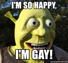 Shrek Memes - i m so happy i m gay gay shrek meme generator