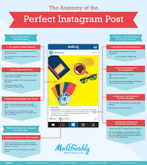 how to gain a massive following on instagram