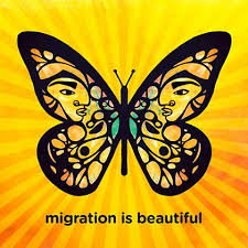 what do butterflies to do with open borders migration is