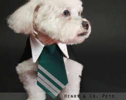 Halloween Dog Costume Harry Potter Dog Costume Halloween Dog Costume Halloween Pet