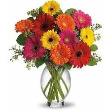 same day just because flowers just because flowers and gifts low prices same day delivery