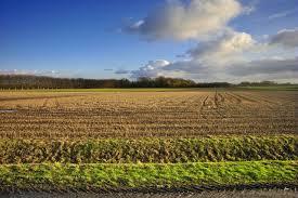 lancement des parcours de compétences en agriculture sur le mel assemblière du développement de l agriculture et d un système