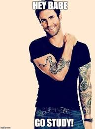 Adam Levine Meme - image tagged in adam levine study studying memes imgflip