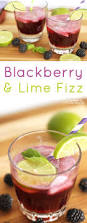 blackberry lime fizz cocktail happiness is homemade