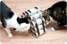 crafty cat toys doodlecats