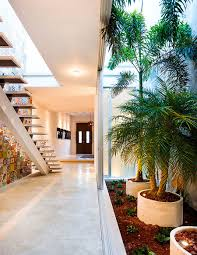 indoor spice garden indoor garden and innovative use of tiles vibrant home in mérida