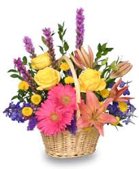 flower basket a day flower basket just because flower shop network