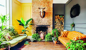 house plants for city homes the eight golden rules to help