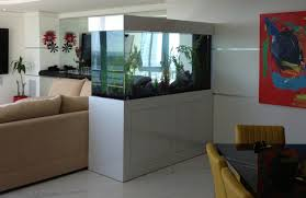 amazing aquarium designs for your comfortable home interior plan