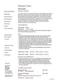 Resume Job Description For Server Server Job Description
