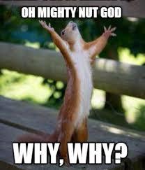 God Why Meme - meme creator oh mighty nut god why why meme generator at