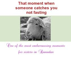Funny Ramadan Memes - halal jokes and funny quotes ramadan funny quotes and humor