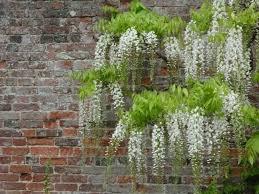 Brick Wall Garden Designs Decorating Ideas Design Trends - Wall garden design