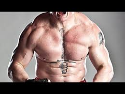 the meaning brock lesnar s chest