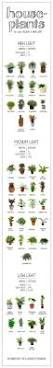 18 best images about gardening on pinterest