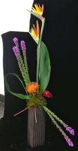 154 best birds paradise arrangements images on pinterest flower