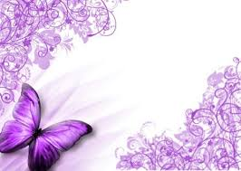 butterflies images purple butterfly wallpaper hd wallpaper and