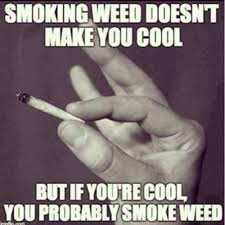 Hilarious Weed Memes - smoking weed doesn t make you cool weed memes